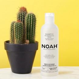 Noah -20%