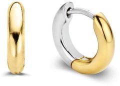 Ti Sento Milano Earrings 7210SY