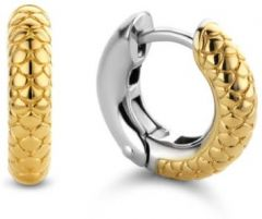 Ti Sento Milano Earrings 7210YY