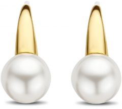 Ti Sento Milano Earrings 7849PW