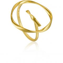 Ania Haie Ring R015-01G